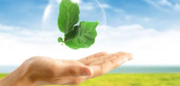 Il Ministero dell'Ambiente ha  trasmesso al Parlamento la relazione sullo Stato dell'Ambiente
